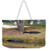 Alligator Hazard Weekender Tote Bag