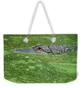 Alligator In Swamp Weekender Tote Bag