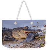 Alligator With A Fish Weekender Tote Bag