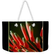 Aloe Bloom Window 2 Weekender Tote Bag