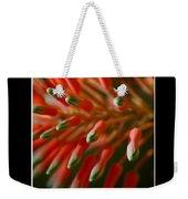 Aloe Bloom Window 3 Weekender Tote Bag