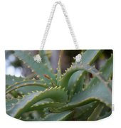 Aloe Vera Leaves  Weekender Tote Bag