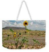 Along Route 66 In Arizona Weekender Tote Bag