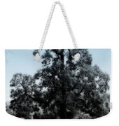 Along The Path Weekender Tote Bag