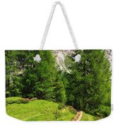 alpine path in Contrin Valley Weekender Tote Bag