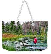 Alpine Pond On Alpine Pond Trail In Cedar Breaks National Monument-utah Weekender Tote Bag
