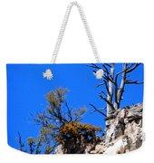 Alpine Wyoming Weekender Tote Bag