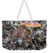 Amanita Muscaria And Edible Boletus Weekender Tote Bag