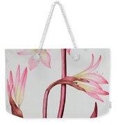 Amaryllis Belladonna Weekender Tote Bag
