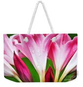 Amaryllis Flowers And Buds In The Rain Weekender Tote Bag