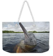 Amazon River Dolphin Spy-hopping Rio Weekender Tote Bag