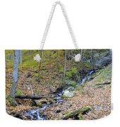 Amber Malanaphy Springs Weekender Tote Bag