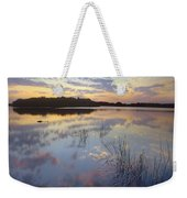 American Alligator Everglades Np Florida Weekender Tote Bag