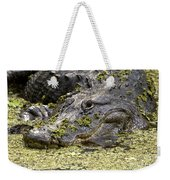 American Alligator Print Weekender Tote Bag