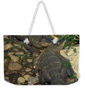 American Alligators Weekender Tote Bag