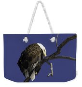 American Bald Eagle 1 Weekender Tote Bag