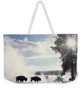 American Bison In Winter Weekender Tote Bag
