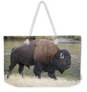 American Bison On The Madison River Weekender Tote Bag