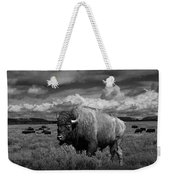 American Buffalo Or Bison In The Grand Teton National Park Weekender Tote Bag