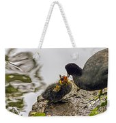 American Coot Feeding Chick Weekender Tote Bag