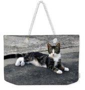 American Grey Tiger Stripe Kitten Portrait Weekender Tote Bag