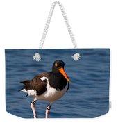 American Oystercatcher Weekender Tote Bag