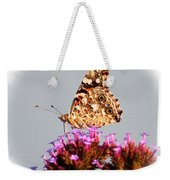 American Painted Lady Butterfly White Square Weekender Tote Bag