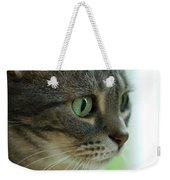 American Shorthair Cat Profile Weekender Tote Bag