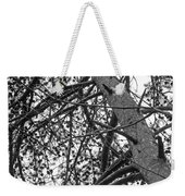 Amidst The Pines Is The Barrens Weekender Tote Bag