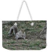 Gray Squirrel Among The Pine Cones Weekender Tote Bag