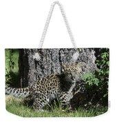 Amur Leopard Cub Antics Weekender Tote Bag
