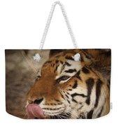 Amur Tiger 3 Weekender Tote Bag