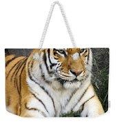 Amur Tiger Weekender Tote Bag