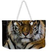 Amur Tiger Watching You Weekender Tote Bag