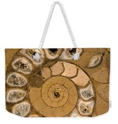 An Ancient Treasure V Weekender Tote Bag