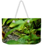 An Angry Anole Weekender Tote Bag