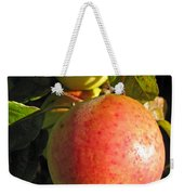 An Apple After Frost Weekender Tote Bag