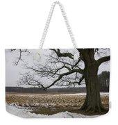 An Appleton Tree And Field In Winter Weekender Tote Bag