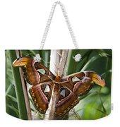 An Atlas Moth  Weekender Tote Bag