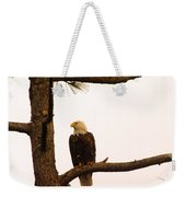 An Eagle Day Dreaming Weekender Tote Bag