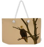An Eagle In An Old Snag Weekender Tote Bag