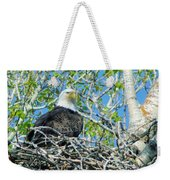 An Eagle In Its Nest  Weekender Tote Bag