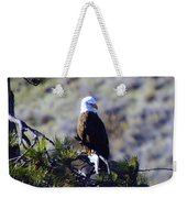 An Eagle In The Sun Weekender Tote Bag