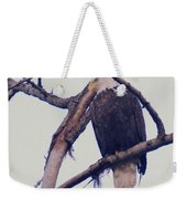 An Eagle Resting  Weekender Tote Bag