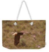 An Eagle Turns  Weekender Tote Bag
