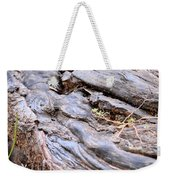 An Earthen Abstract Weekender Tote Bag