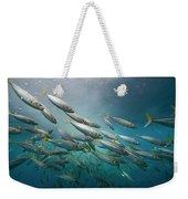 An Underwater View Of Schooling Fish Weekender Tote Bag