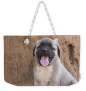 Anatolian Shepherd Puppy Weekender Tote Bag