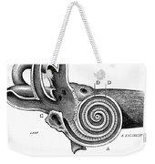 Anatomy: Middle Ear Weekender Tote Bag