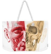 Anatomy Of A Male Human Head, With Half Weekender Tote Bag by Leonello Calvetti